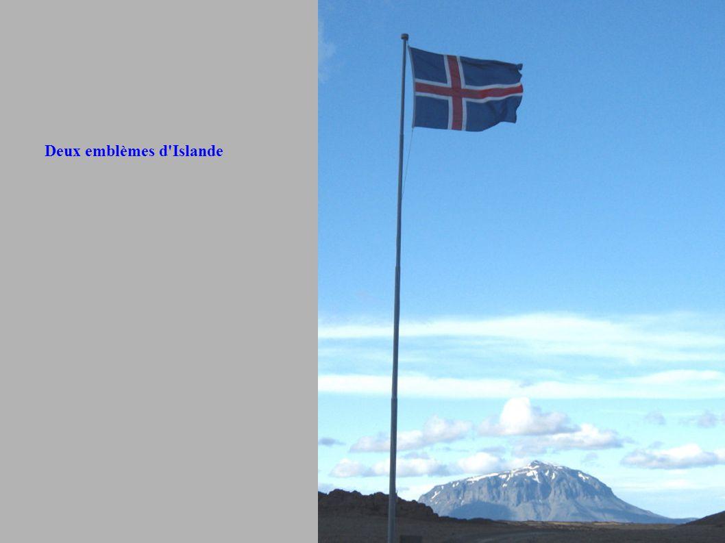 Deux emblèmes d'Islande