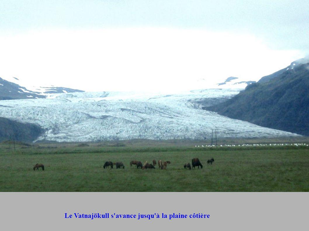 Le Vatnajökull s'avance jusqu'à la plaine côtière