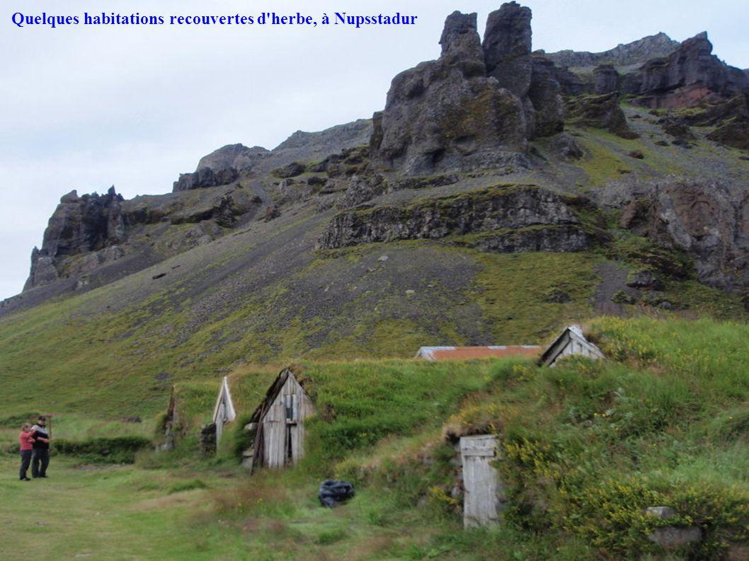 Quelques habitations recouvertes d'herbe, à Nupsstadur
