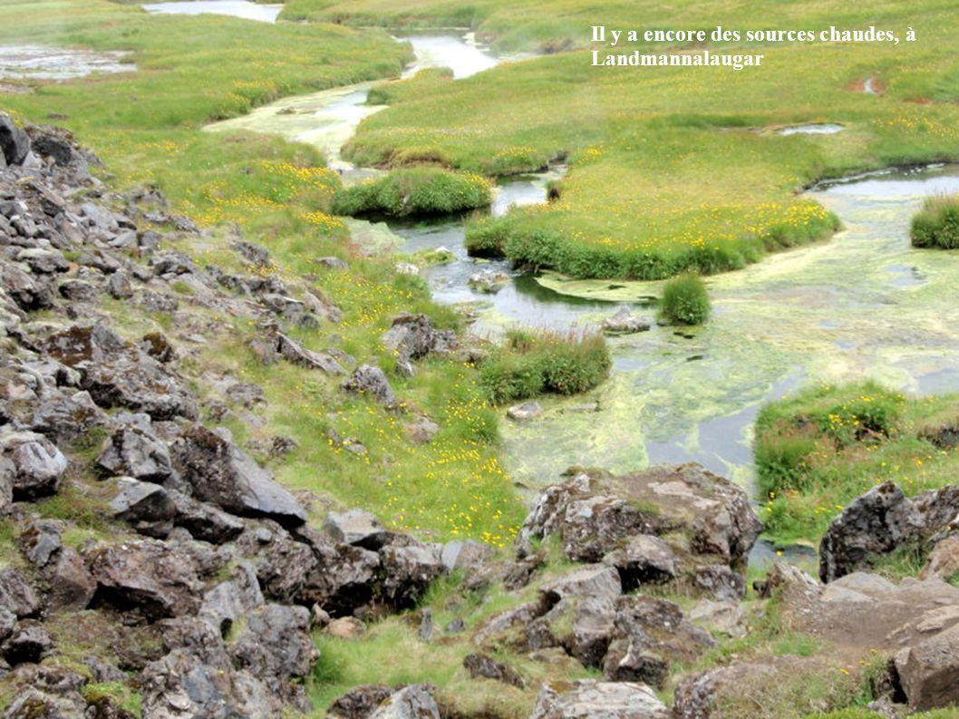 Il y a encore des sources chaudes, à Landmannalaugar