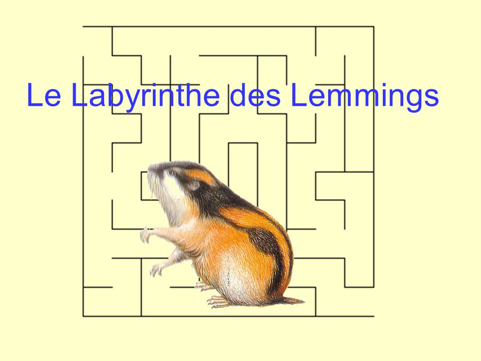 Le Labyrinthe des Lemmings