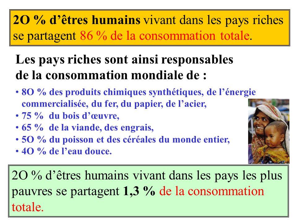 2O % dêtres humains vivant dans les pays riches se partagent 86 % de la consommation totale. 8O % des produits chimiques synthétiques, de lénergie com