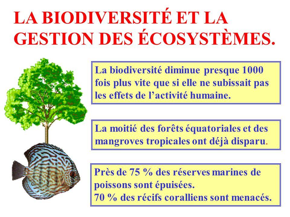 LA BIODIVERSITÉ ET LA GESTION DES ÉCOSYSTÈMES. La biodiversité diminue presque 1000 fois plus vite que si elle ne subissait pas les effets de lactivit