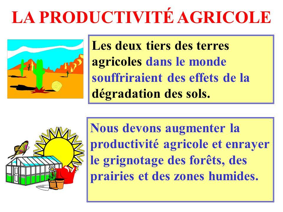 LA PRODUCTIVITÉ AGRICOLE Les deux tiers des terres agricoles dans le monde souffriraient des effets de la dégradation des sols. Nous devons augmenter
