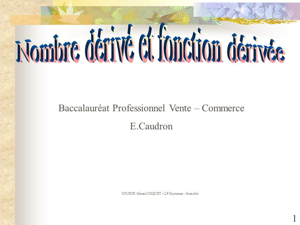 1 SOURCE :Gérard COQUET – LP Guynemer - Grenoble Baccalauréat Professionnel Vente – Commerce E.Caudron
