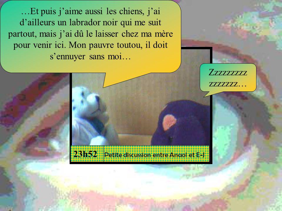 Lavis des psys Tiens, un narcissique maladif… Cest un boulot pour nous ça!!