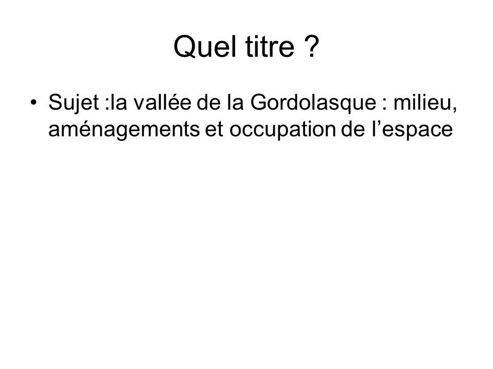 Quel titre ? Sujet :la vallée de la Gordolasque : milieu, aménagements et occupation de lespace