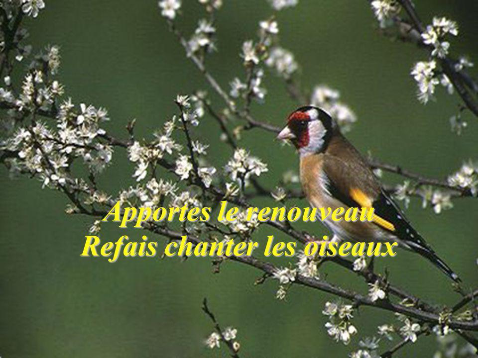 Apportes le renouveau Refais chanter les oiseaux
