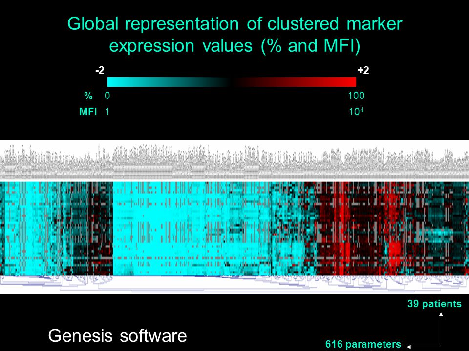 Global representation of clustered marker expression values (% and MFI) 616 parameters 39 patients 100 10 4 0 1 % MFI Genesis software -2+2