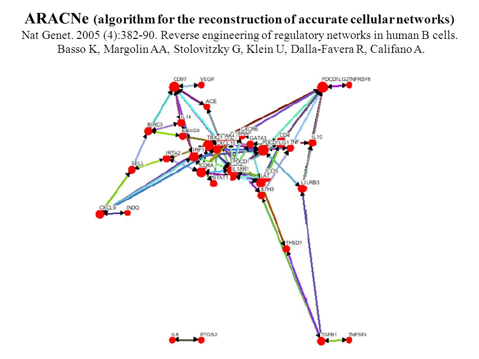 ARACNe (algorithm for the reconstruction of accurate cellular networks) Nat Genet.