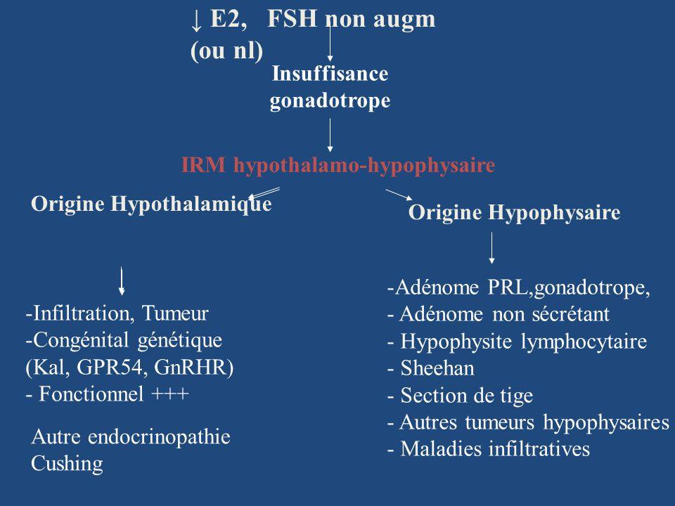 IRM hypothalamo-hypophysaire E2, FSH non augm (ou nl) Insuffisance gonadotrope -Adénome PRL,gonadotrope, - Adénome non sécrétant - Hypophysite lymphocytaire - Sheehan - Section de tige - Autres tumeurs hypophysaires - Maladies infiltratives Origine Hypophysaire -Infiltration, Tumeur -Congénital génétique (Kal, GPR54, GnRHR) - Fonctionnel +++ Origine Hypothalamique Autre endocrinopathie Cushing