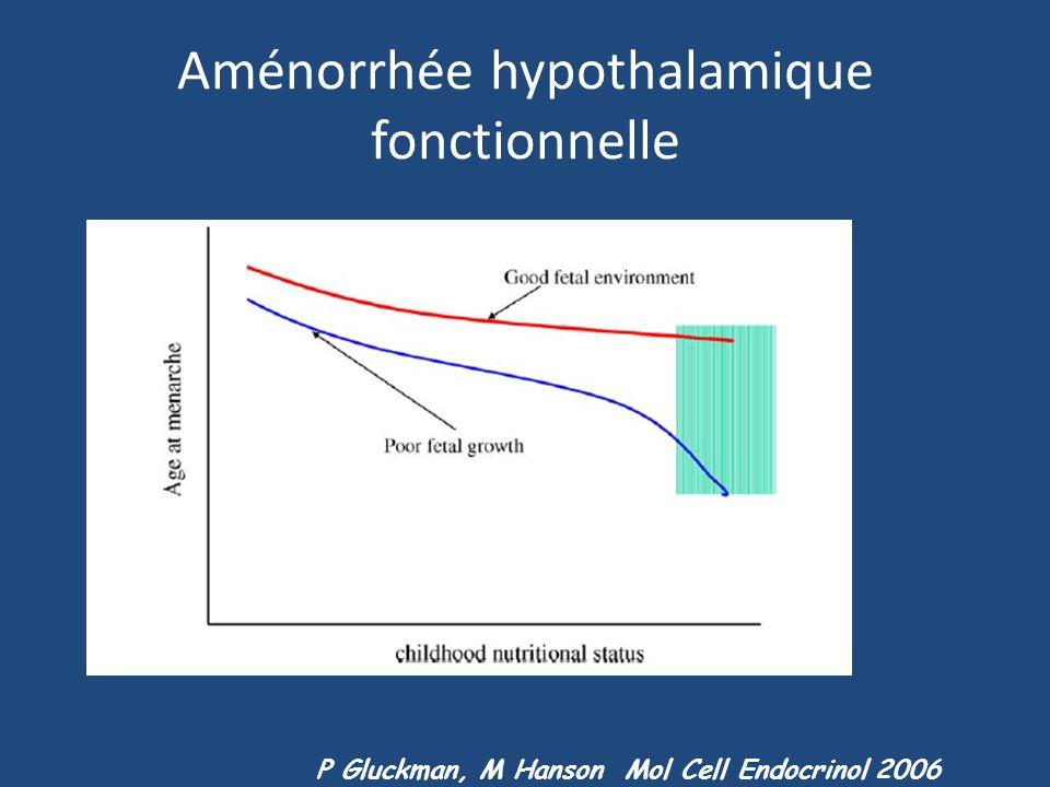 Aménorrhée hypothalamique fonctionnelle P Gluckman, M Hanson Mol Cell Endocrinol 2006