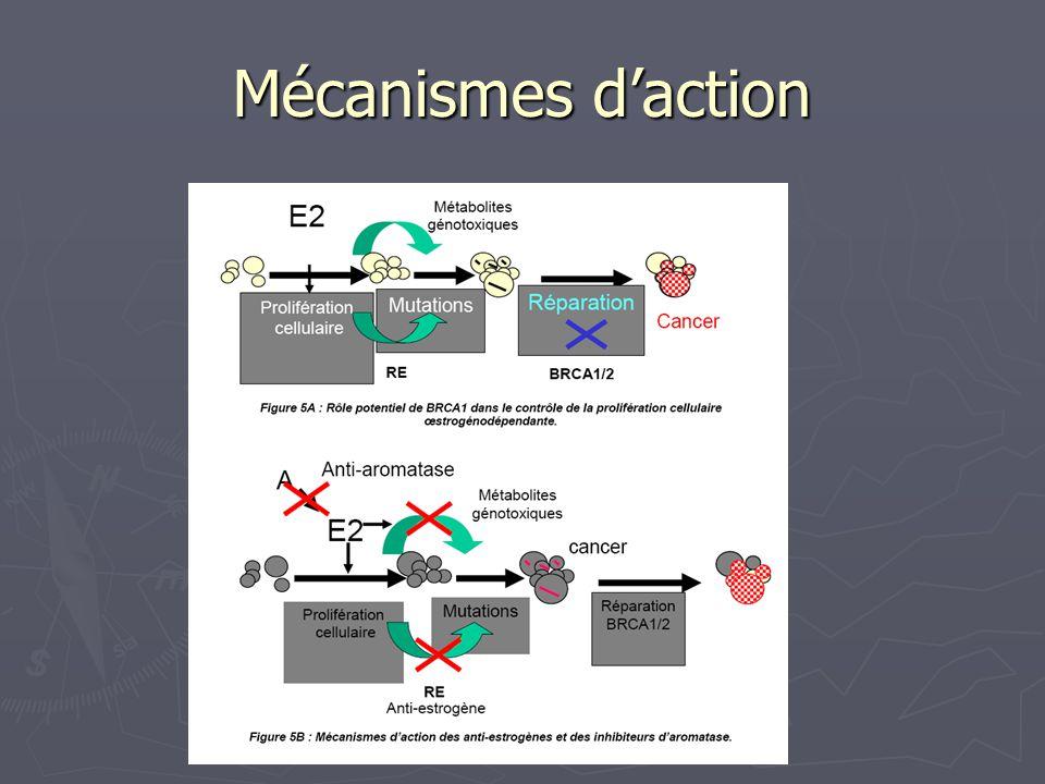 Les SERMs Raloxifene NS S ER activation Transcriptionnelle Tissu dépendante