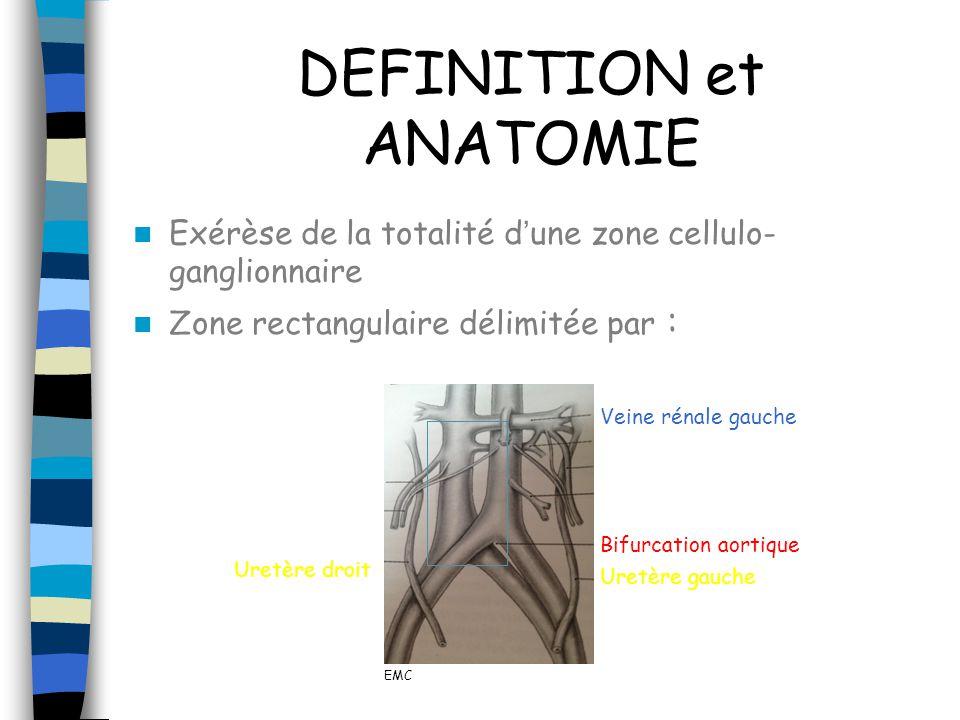 DEFINITION et ANATOMIE Exérèse de la totalité dune zone cellulo- ganglionnaire Zone rectangulaire délimitée par : Veine rénale gauche Uretère gauche U