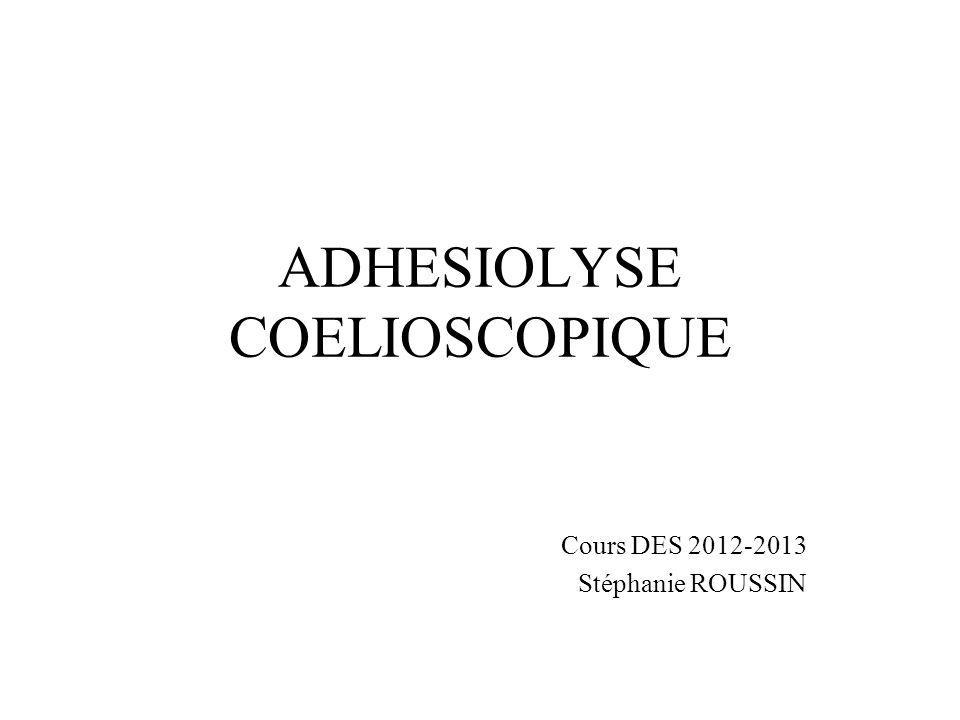 ADHESIOLYSE COELIOSCOPIQUE Cours DES 2012-2013 Stéphanie ROUSSIN