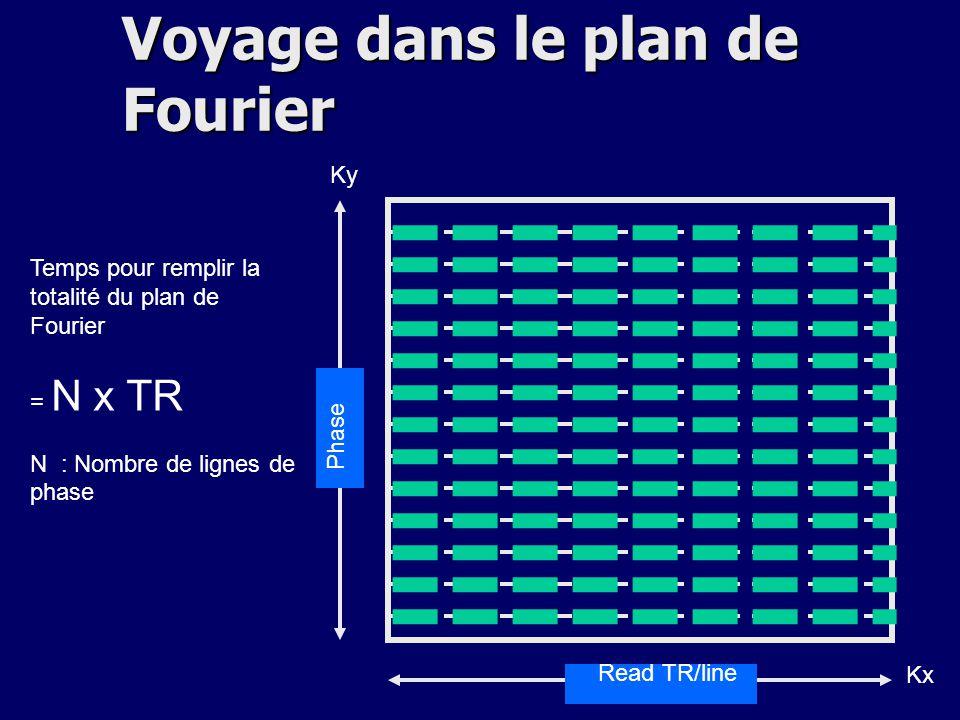 Read TR/line Phase Temps pour remplir la totalité du plan de Fourier = N x TR N : Nombre de lignes de phase Kx Ky Voyage dans le plan de Fourier