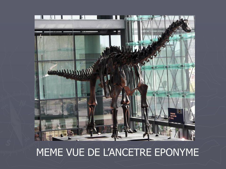 MEME VUE DE LANCETRE EPONYME