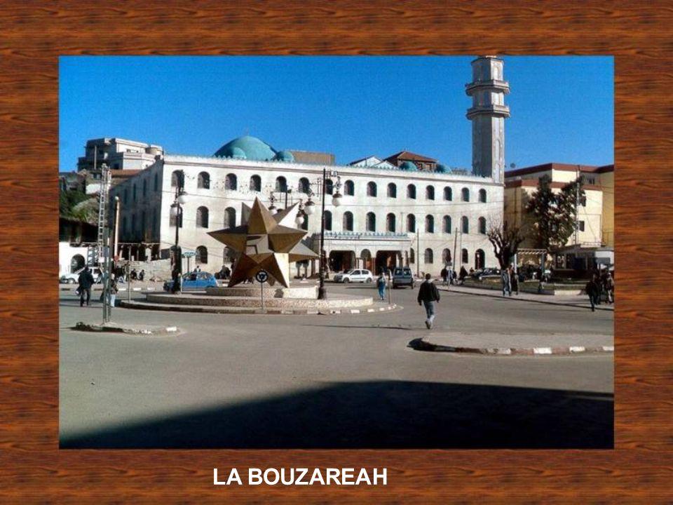 Rue Bab Azoun