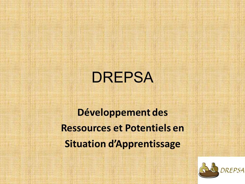 DREPSA Développement des Ressources et Potentiels en Situation dApprentissage