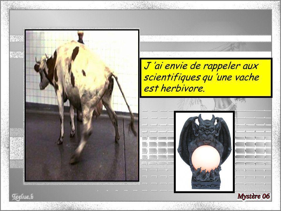 J ai envie de rappeler aux scientifiques qu une vache est herbivore.