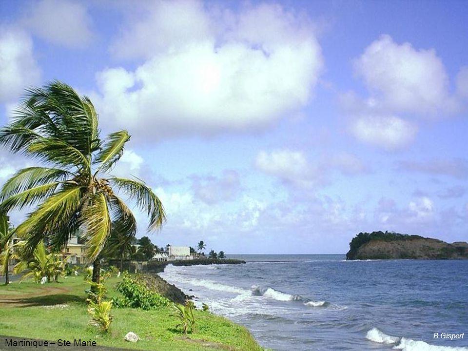 Bages (11) B.Gispert Martinique – Ste Marie B.Gispert