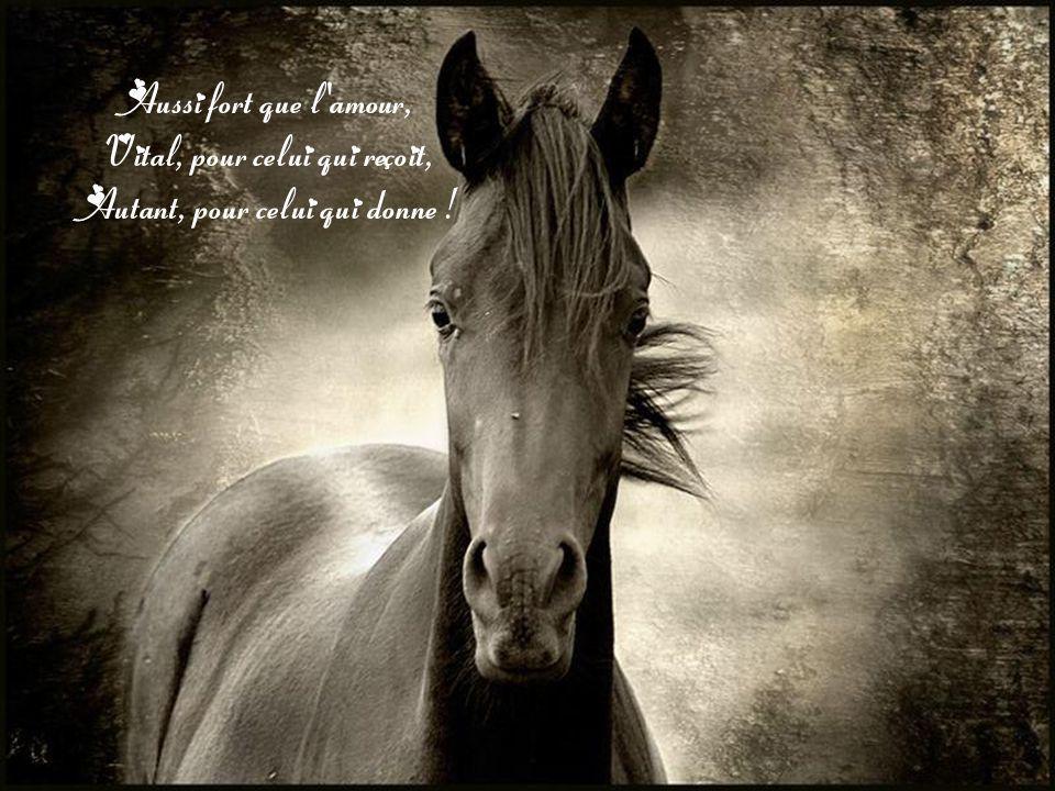 Aussi fort que l amour, Vital, pour celui qui reçoit, Autant, pour celui qui donne !
