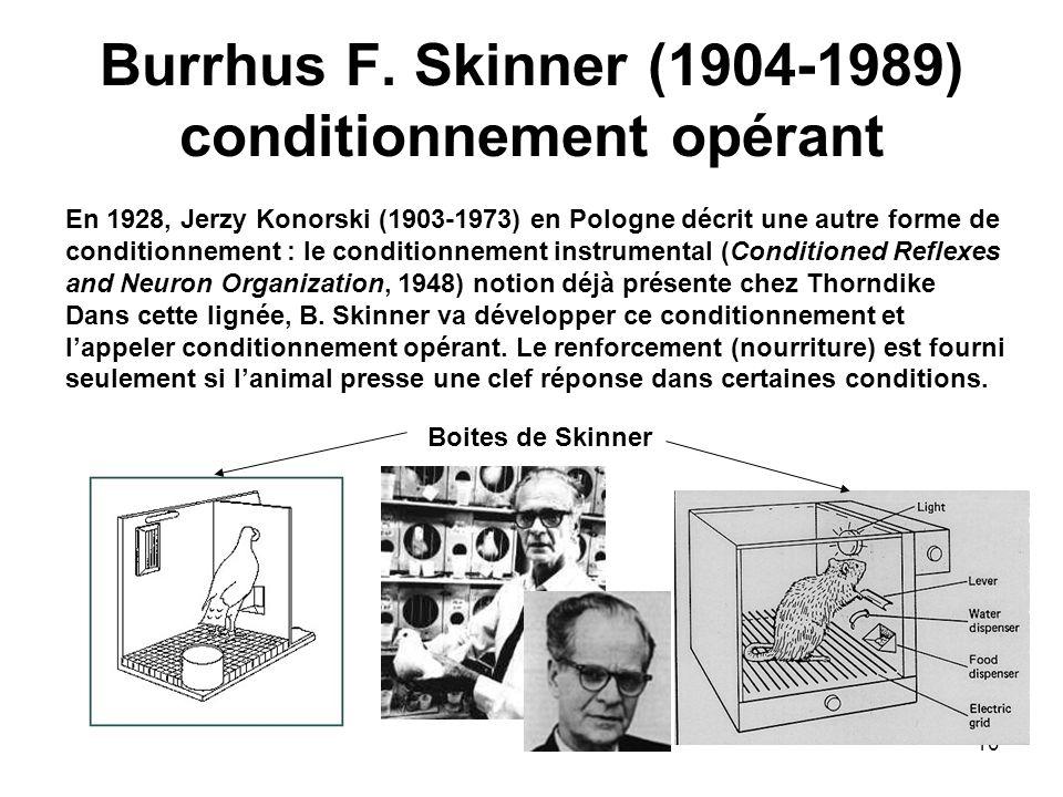 10 Burrhus F. Skinner (1904-1989) conditionnement opérant En 1928, Jerzy Konorski (1903-1973) en Pologne décrit une autre forme de conditionnement : l