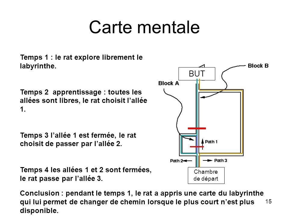 15 Carte mentale Temps 1 : le rat explore librement le labyrinthe. Temps 2 apprentissage : toutes les allées sont libres, le rat choisit lallée 1. Tem