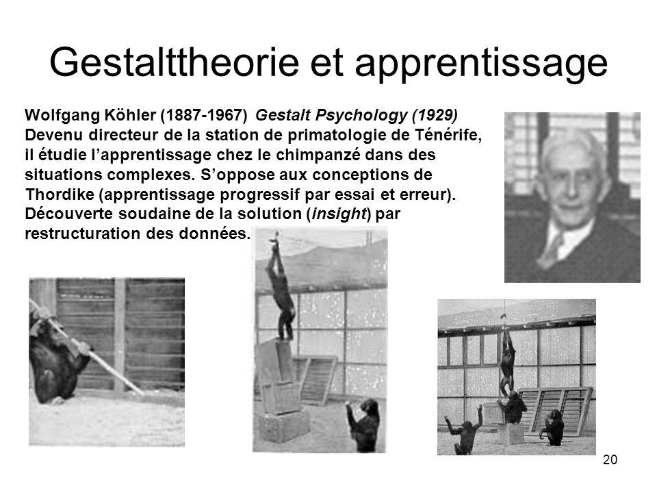 20 Gestalttheorie et apprentissage Wolfgang Köhler (1887-1967) Gestalt Psychology (1929) Devenu directeur de la station de primatologie de Ténérife, il étudie lapprentissage chez le chimpanzé dans des situations complexes.