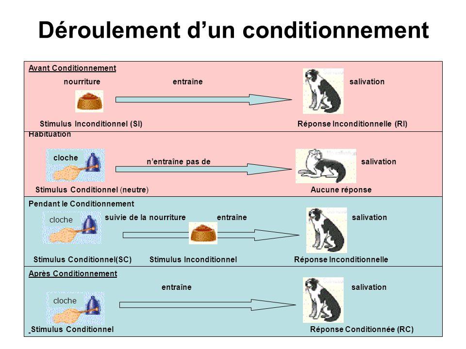 8 Habituation nentraîne pas de salivation Stimulus Conditionnel (neutre) Aucune réponse cloche Déroulement dun conditionnement Avant Conditionnement n