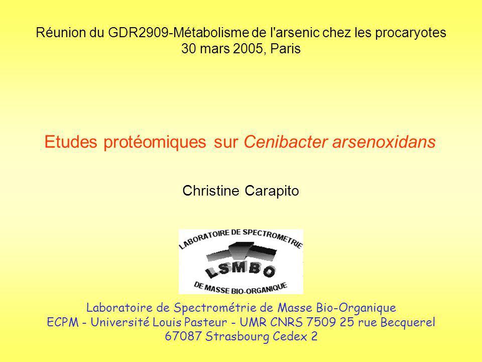 Deux études : 1_ Etude protéomique différentielle : Identification des protéines impliquées dans le mécanisme de résistance à larsenic 2_ Réalisation dune carte protéomique complète de Cenibacter arsenoxidans Etudes protéomiques sur Cenibacter arsenoxidans