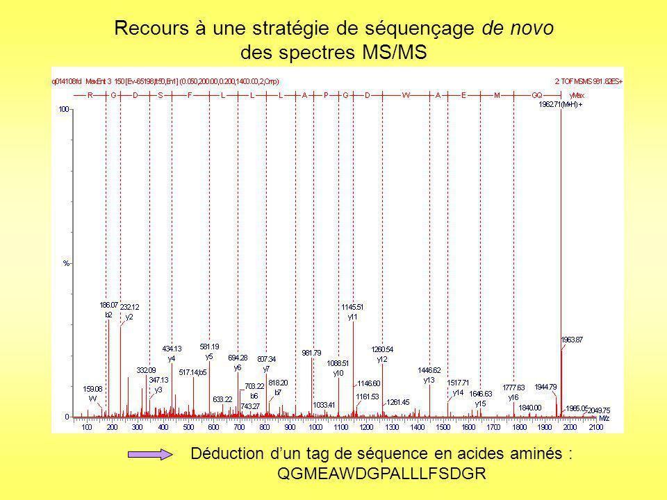 Séquençage de novo Détermination de plusieurs tags de séquence: TYNVLFLCTGNSAR-FVAYSAGSHPGGTVNPFAIEQIK- STGYALENLR-AVFSKIAK-VNLLNSLPLAMLEKTALK-EMDAIGSSK + MS/MS spectrum of the parent ion m/z = 698.78 (retention time=28.1min) Détermination dun tag de séquence : SIMAEAMINTMGK Résultat Soumission au MS-BLAST Identification par homologie de séquence : tolérance aux variations dans les séquences