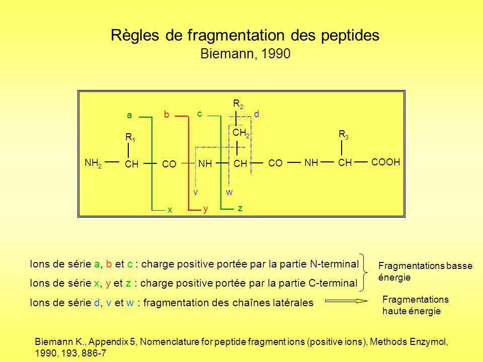 + ALLLFSDGR + Fragmentation des peptides : La loi du proton mobile + ALLLFSDGR + Fragmentation dans la cellule de collision Les peptides ne cassent qu une seule fois pour générer préférentiellement les fragments y et b + ALLLFSDGR + Dongré et al., Journal of Mass Spectrometry, Vol.