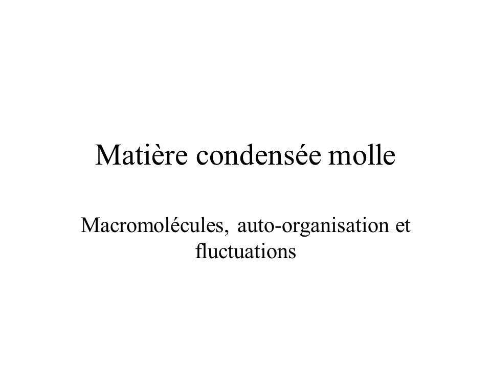 Matière condensée molle Macromolécules, auto-organisation et fluctuations