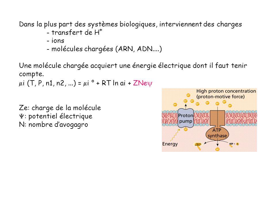 Dans la plus part des systèmes biologiques, interviennent des charges - transfert de H + - ions - molécules chargées (ARN, ADN....) Une molécule charg