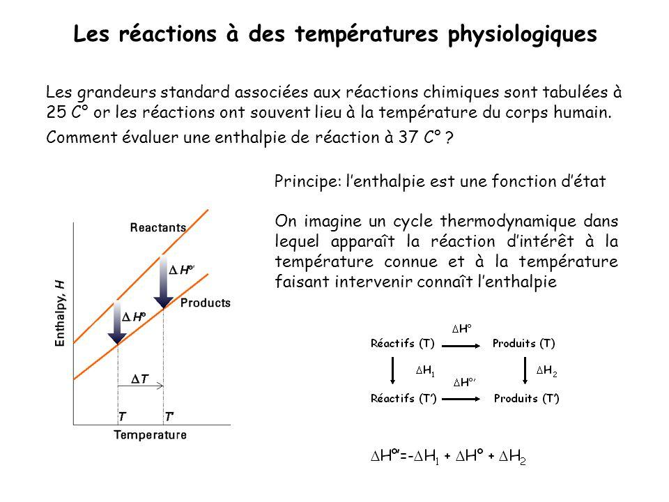 Les réactions à des températures physiologiques Les grandeurs standard associées aux réactions chimiques sont tabulées à 25 C° or les réactions ont so