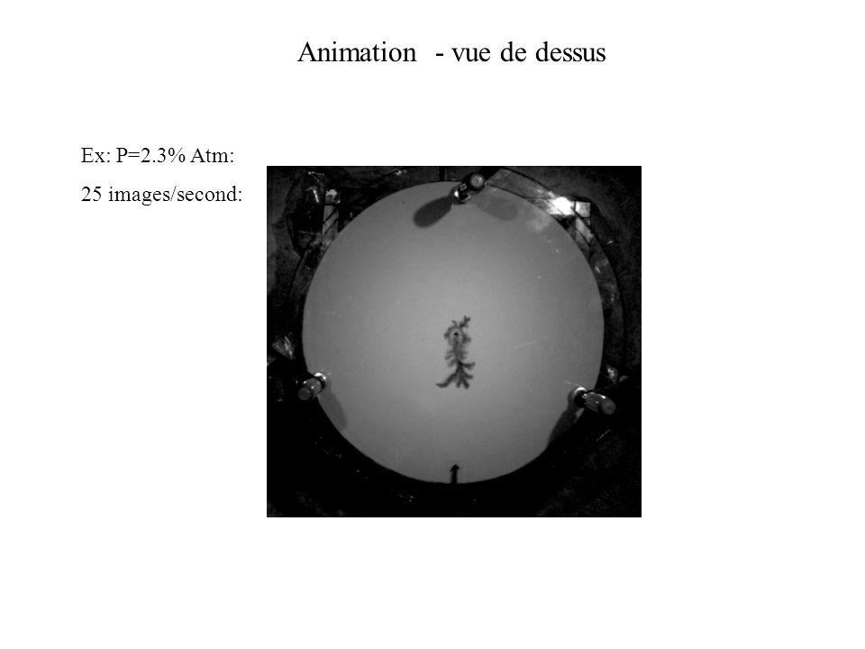 Animation - vue de dessus Ex: P=2.3% Atm: 25 images/second: