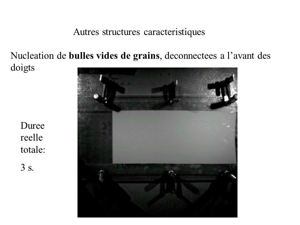 Autres structures caracteristiques Nucleation de bulles vides de grains, deconnectees a lavant des doigts Duree reelle totale: 3 s.