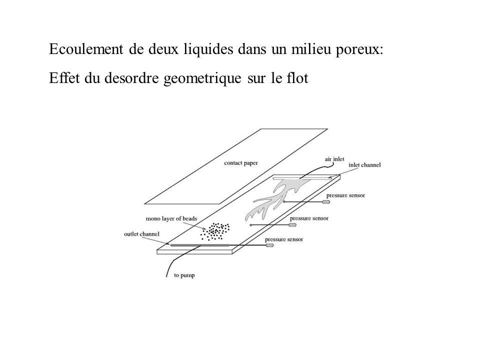 Ecoulement de deux liquides dans un milieu poreux: Effet du desordre geometrique sur le flot