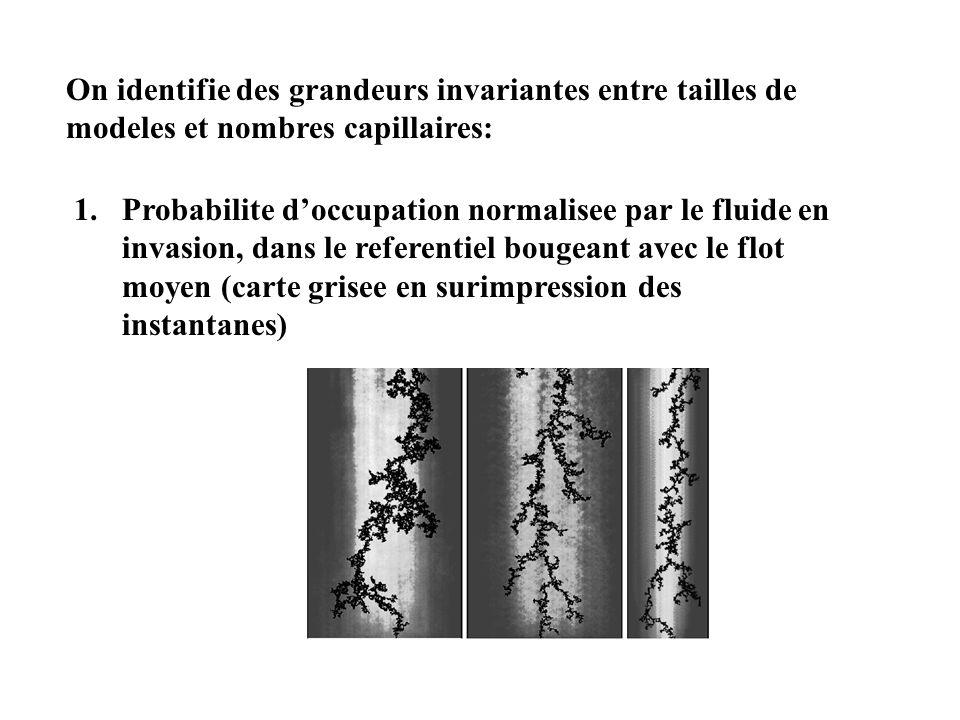On identifie des grandeurs invariantes entre tailles de modeles et nombres capillaires: 1.Probabilite doccupation normalisee par le fluide en invasion, dans le referentiel bougeant avec le flot moyen (carte grisee en surimpression des instantanes)