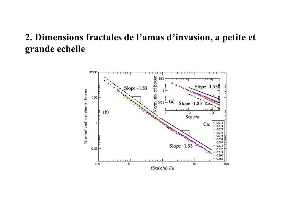 2. Dimensions fractales de lamas dinvasion, a petite et grande echelle