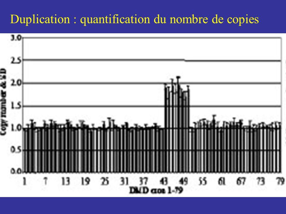 Duplication : quantification du nombre de copies