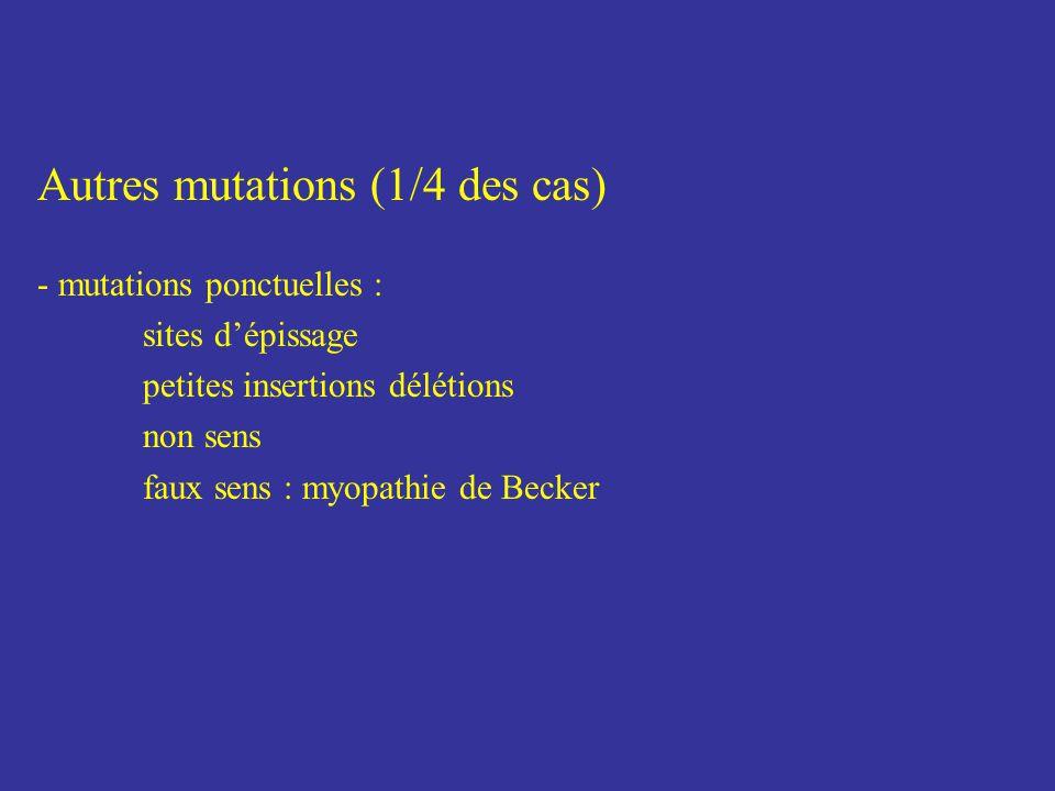Autres mutations (1/4 des cas) - mutations ponctuelles : sites dépissage petites insertions délétions non sens faux sens : myopathie de Becker