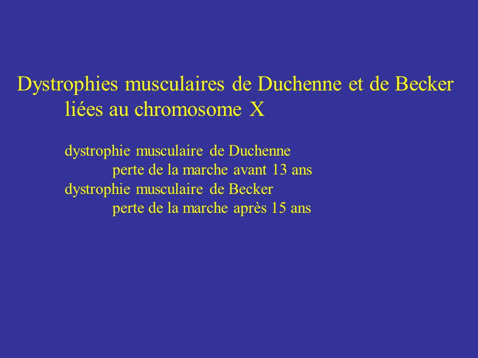 Dystrophies musculaires de Duchenne et de Becker liées au chromosome X dystrophie musculaire de Duchenne perte de la marche avant 13 ans dystrophie mu