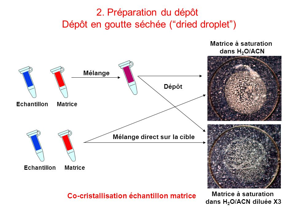 MatriceEchantillon Matrice à saturation dans H 2 O/ACN Matrice à saturation dans H 2 O/ACN diluée X3 Mélange Dépôt MatriceEchantillon Mélange direct s