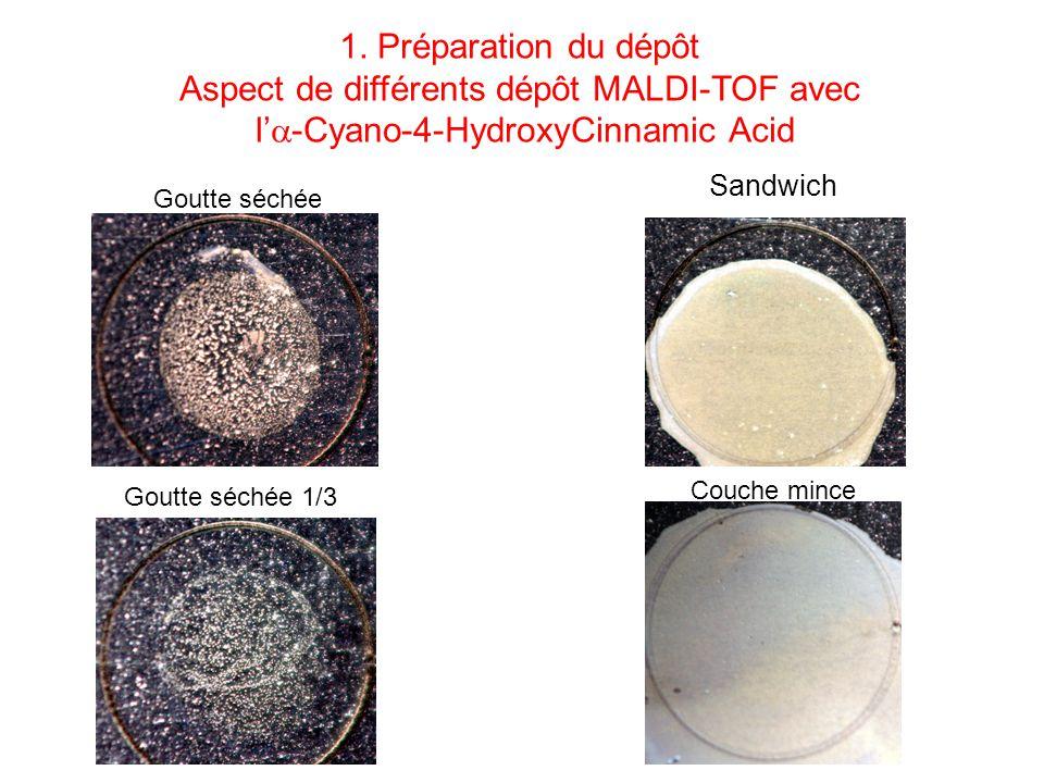 Sandwich Goutte séchée Goutte séchée 1/3 1. Préparation du dépôt Aspect de différents dépôt MALDI-TOF avec l -Cyano-4-HydroxyCinnamic Acid Couche minc