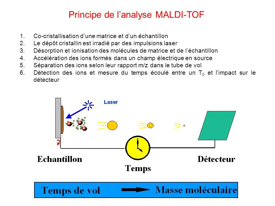 Principe de lanalyse MALDI-TOF 1.Co-cristallisation dune matrice et dun échantillon 2.Le dépôt cristallin est irradié par des impulsions laser 3.Désorption et ionisation des molécules de matrice et de léchantillon 4.Accélération des ions formés dans un champ électrique en source 5.Séparation des ions selon leur rapport m/z dans le tube de vol 6.Détection des ions et mesure du temps écoulé entre un T 0 et limpact sur le détecteur