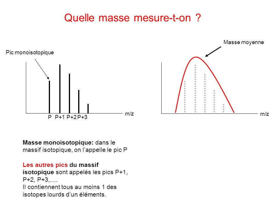 Pic monoisotopique P P+1 P+2P+3 m/z Masse moyenne Quelle masse mesure-t-on .