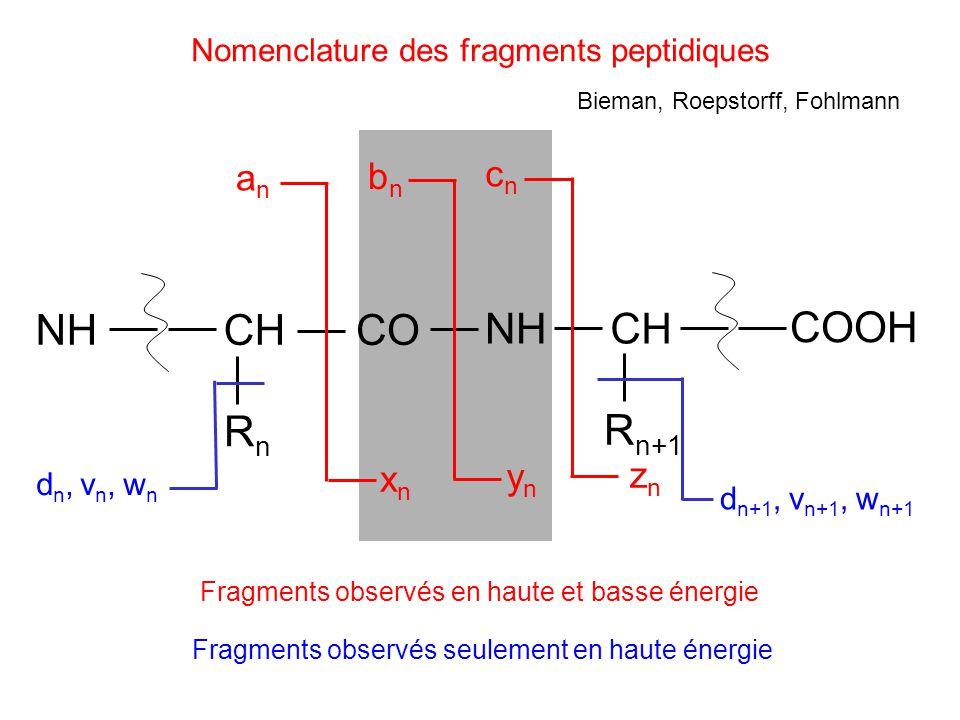 Nomenclature des fragments peptidiques Fragments observés seulement en haute énergie CH RnRn CO NHCH R n+1 anan bnbn cncn xnxn ynyn znzn NH COOH dn, v