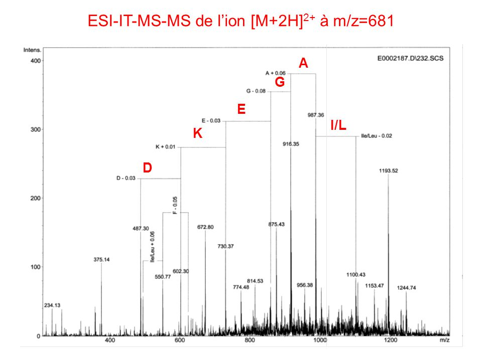 ESI-IT-MS-MS de lion [M+2H] 2+ à m/z=681 I/L A G E K D